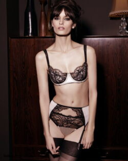 see thru lingerie photos and shiny sheer