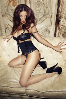 silk dreams lingerie and lace topped stockings